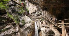 Bärenschützklamm & Schüsserlbrunn - Fotospots | Spezialitäten | Brauchtum Instagram, Photos, Photo Mural, Road Trip Destinations, Graz, Woodland Forest