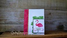 Flamingo!! Pop of Pa