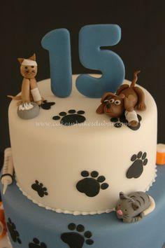 Vets Cake For My Daughter Who Is Mad On Animals Vets