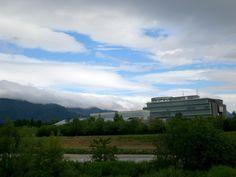 菰野町菰野地区 雨上がり  平成24年6月22日 am7:50撮影