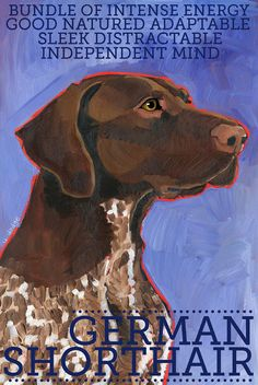 "German Shorthaired Pointer No. 1 - 13x19"" art poster from original oil painting brown roan liver silver"