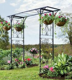 Nice idea to have some hanging plants on there, while waiting for something to start growing up. Arbors and Trellises: Garden Arbors, Garden Trellises - Plow  Hearth