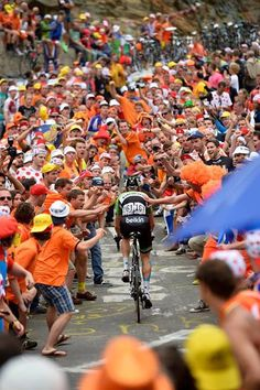 Lars Boom at the infamous Dutch corner on Alpe d'Huez. 2013 Tour de France, stage photo of the year! Bicycle Race, Bicycle Girl, Cycling Art, Cycling Bikes, Cycle Photo, Alpe D Huez, Cycling Motivation, Road Bike, Mountain Biking