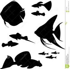 https://thumbs.dreamstime.com/z/silhouettes-aquarium-fish-different-31447286.jpg
