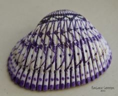 Drawing on Sea Shells … Micron Pen or Sharpie? Must I Stay Inside the Grooves?