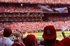 19 days until opening day of St. Louis Cardinals baseball. But who's counting.