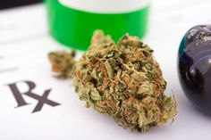 Science Shows Marijuana Can Help Kill Tumors, Federal Government Admits | ThinkProgress