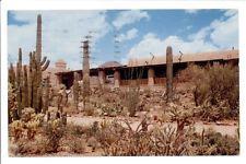 Tucson, AZ - Cactus Garden at Arizona Sonora Desert Museum 1960