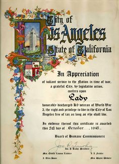 Certificate of Appreciation for Lady from Los Angeles, California, for her service as a war dog. The National WWII Museum, 2008.285
