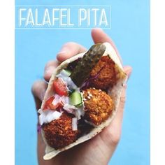 New Post! Crispy, fresh, steaming, tangy, soft, creamy Falafel Pita for your weekly dose of street food deliciousness. (link in profile)