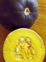 Apologies for the photo quality - the only pics I have of gem squash are 3 or 4 years old, predating my proper camera (or any knowledge of aperture priority or white balance, evidently)! No doubt my non-South African readers...