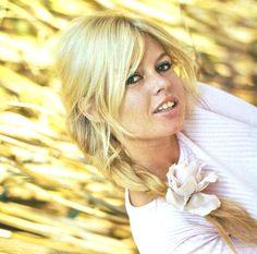 Brigitte Bardot .