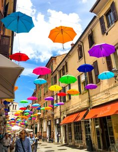 Umbrella Street in F