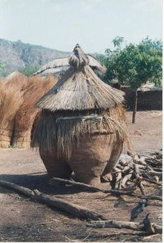 A Granary in Benin, to protect against rain and vermin by Chris Starace