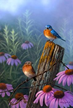 Bluebirds and Purple Coneflower - bird painting by Larry Zach