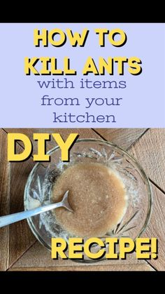 Learn how to kill ants with ingredients from your kitchen. Kill ants safely and naturally #killants #pestcontrol #killantsnaturally #howtogetridofants #diypestcontrol #anttrap