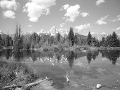 Life's Reflections ~ Grand Teton National Park, Wyoming