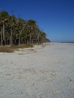 Hunting Island Beach Near Beaufort South Carolina A Great Place To Soak Up The