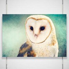 Barn Owl Photo  8x12 Photograph  Owl Art Print  by BokehEverAfter, $25.00