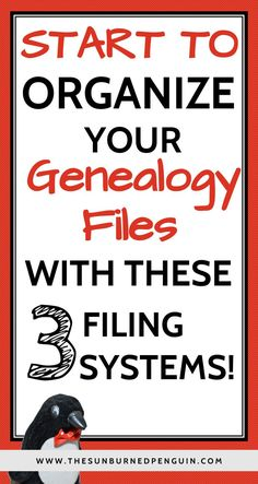 Drowning in piles of paper? Check out these three filing systems to get organized today! http://thesunburnedpenguin.com/what-to-do-with-all-those-genealogy-files/