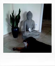 Meditation Digital Photography, Meditation, Painting, Art, Pictures, Art Background, Painting Art, Kunst, Paintings
