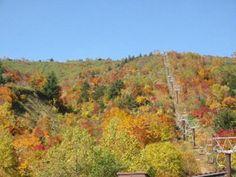 八幡平(山頂付近)の紅葉