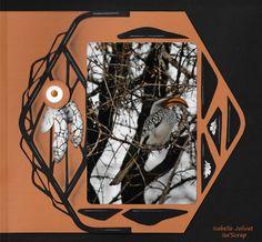 Le calao d'Afrique - Page avec feuille - Gabarit Melbourne Melbourne, Unique Photo, Photos, Cards, Autumn, Colors, Template, Africa, Pictures