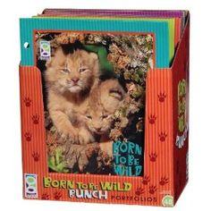 Raymond Geddes 67453 Born To Be Wild Bunch Folders, 48 per Display (67453)