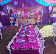 Shimmer and shine party decor