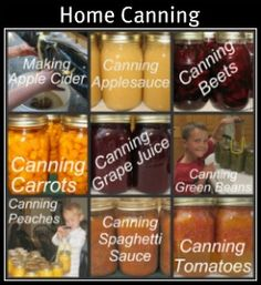 good site for storing food: Canning, freezing and dry-storage Canning Tips, Home Canning, Canning Recipes, Best Freezer Corn Recipe, Conservation, Making Apple Cider, Canning Applesauce, Freezing Vegetables, Veggies
