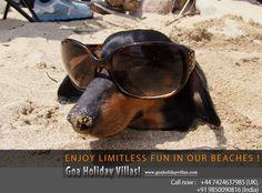 Enjoy unlimited fun on beach!