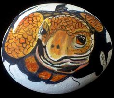 baby turtle painted on river rock