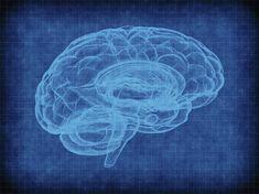 Nieuw onderzoek: dit gebeurt er in je hersenen als je dood gaat - wel.nl