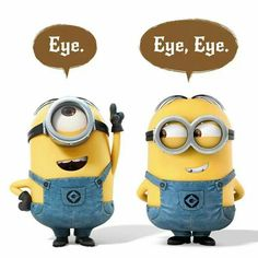 If you love the Minions from Despicable Me and Despicable Me you are in for a serious treat. The Minions are getting… Minions Eyes, Minions Images, Minion Movie, Minion Pictures, Minions Despicable Me, Minions Quotes, Funny Pictures, Minions 2014, Humor