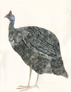 Single Guinea Fowl  Original Drawing by unitedthread on Etsy