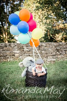 6 Month baby in basket with balloons photo at Knoxville Botanical Gardens by Amanda May Photos