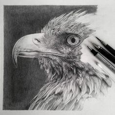 Моника Ли использует карандаш для создания сложных портреты людей, животных и натюрмортов.