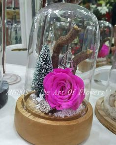 🌲 Christmas time 🌲 #chrismastime #christmastree #roses #wood #glass #chrismasspirit #roseamor #fuchsiaroses #fuchsia #snowtree #snow #handmade #nofilters #colours #flowershots #flowers #flowerlovers #handmadelove #greece #thessaloniki #anthos_theartofflowers Greece Thessaloniki, Wood Glass, Flower Art, Christmas Time, Snow Globes, Roses, Colours, Flowers, Handmade