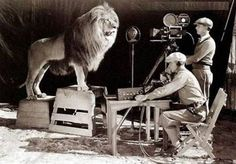 Sometime in 1920s, this is how they shot the logo for MGM Studios!! More about MGM Lions http://en.wikipedia.org/wiki/Leo_the_Lion_%28MGM%29