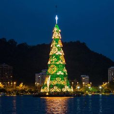 This is the main Christmas tree in Rio de Janeiro, Brazil. It's right on the big lagoon in the city center, and it's an amazing sight to see!