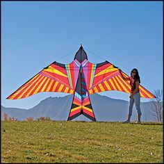 How to build your own kites