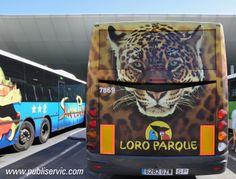Rotulación Loro Parque. Contacta con nosotros en el 922 646 824 o vía email a mailto:comercial@... #publiservic #rotulacion #autobus Vehicles, Parrot, Advertising, Parks, Car, Vehicle, Tools