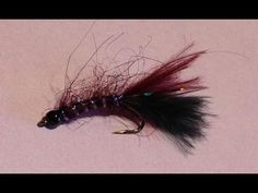 UV Leech Fly Pattern | Fly Tying Instruction & Fly Fishing Tips. A Must Have Fly Pattern for BC Interior Still Water Trophy Trout Lake Success!
