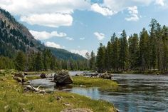 Yellowstone vacation tips from Frommers