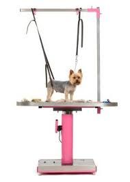 I want this table for Dog grooming