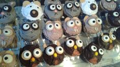 Bear, owl, squirrel and racoon cupcakes for woodland animal baby shower made by Grandma Bev and myself. We used the mini oreo cookies in chocolate and vanilla. The owls beak is a candy corn and squirrels mouths with an almond. The bears noses are butterscotch chips. The eyes for most are the oreos with a dab of black gel frosting for pupil, some are the pre-made candy eyes in small size. We had so much fun!