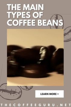 Does arabica coffee sound familiar to you? If yes, Is it a coffee drink or one of the different types of coffee beans? You really need to read this article if the former is your answer. Meanwhile, if your answer is the latter, what is the most common types of coffee beans? Gotcha! just head to the page and learn more about the types of coffee beans. #coffeebeans #typesofcoffeebeans #arabicacoffeebeans #robustacoffee beans #coffeeroasting Types Of Coffee Beans, Different Types Of Coffee, Coffee Type, Best Coffee, Capricorn And Cancer, Coffea Arabica, Arabica Coffee Beans, Coffee Today, Coffee Facts
