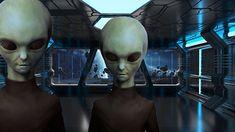 Los Extraterrestres Zeta Reticulis y su real propósito en la Tierra         Los Zeta Reticulis, se describen como muy similares, a la de...
