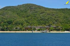 fritzroy-island-snorkeling