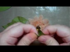 Flower Shoppe Flowers by Tee - YouTube